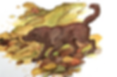 Yarmouth Water Dog Illustration