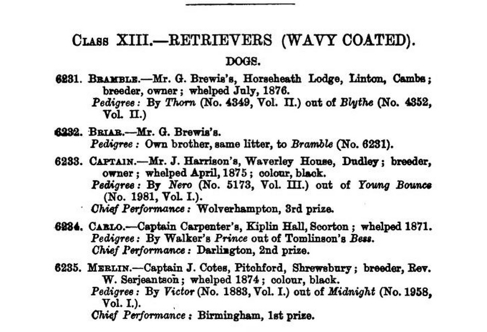 A page of wavy-coated retriever registrations in the 1877 English Kennel Club studbook.