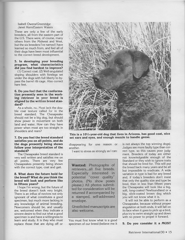 Page two of an interview with Mildred Buchholz of Chesachobee Chesapeake Bay Retrievers