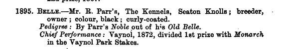 Curly Belle 1874 Stud Book.jpg