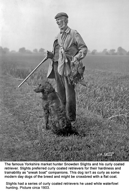 Yorkshire Waterfowl Hunter Snowden Slights and his curly coated retriever