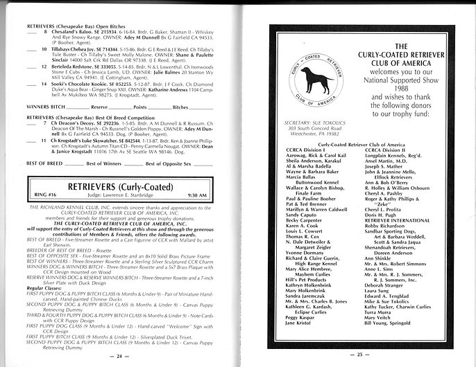curly coated retriever CCRCA championship dog show 1988 specialty catalogue page 2