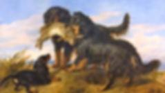 Retrievers by Edwin Landseer