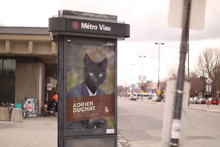 Metro Viau 2 copy.jpg