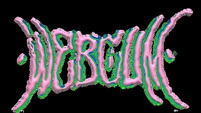 dindi_webcum_logo.png