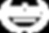 SXSW2020_OfficialSelectionLaurel copia.p