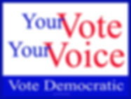 Yard Sign Your Vote Is Your Voice for we