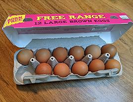 Egg carton.png