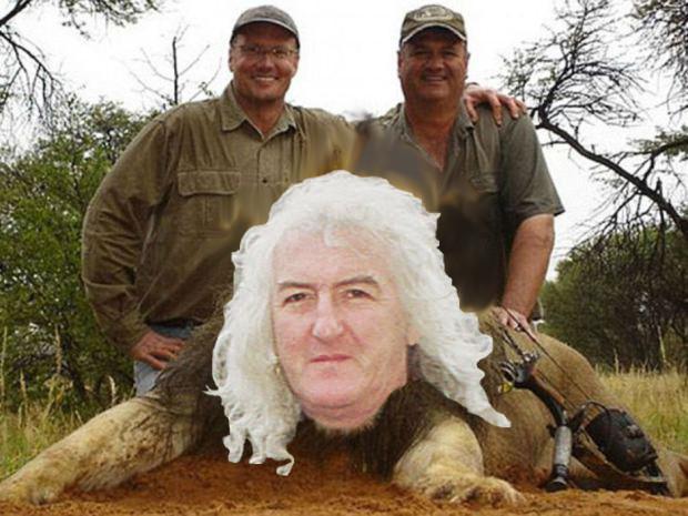 AFRICAN LION KILLER SETS SIGHTS ON RARE IRISH SPECIES: THE GOOD ACCOMPANIST
