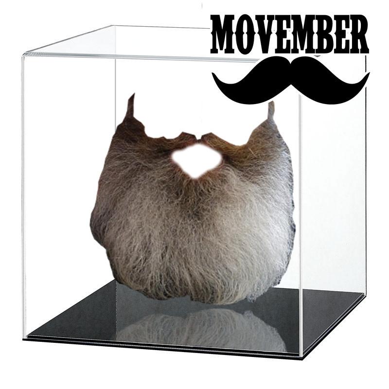 movemberbeard.jpg
