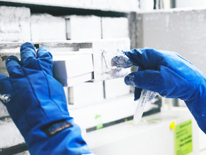 Refrigerant Conditioning: Choosing the Right Equipment
