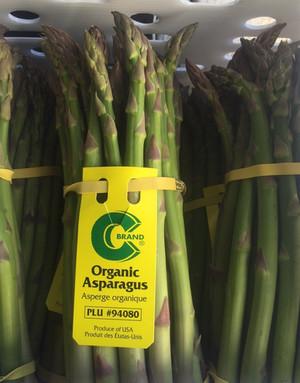Springtime Vegetable