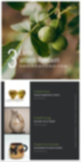 collage(1).jpg