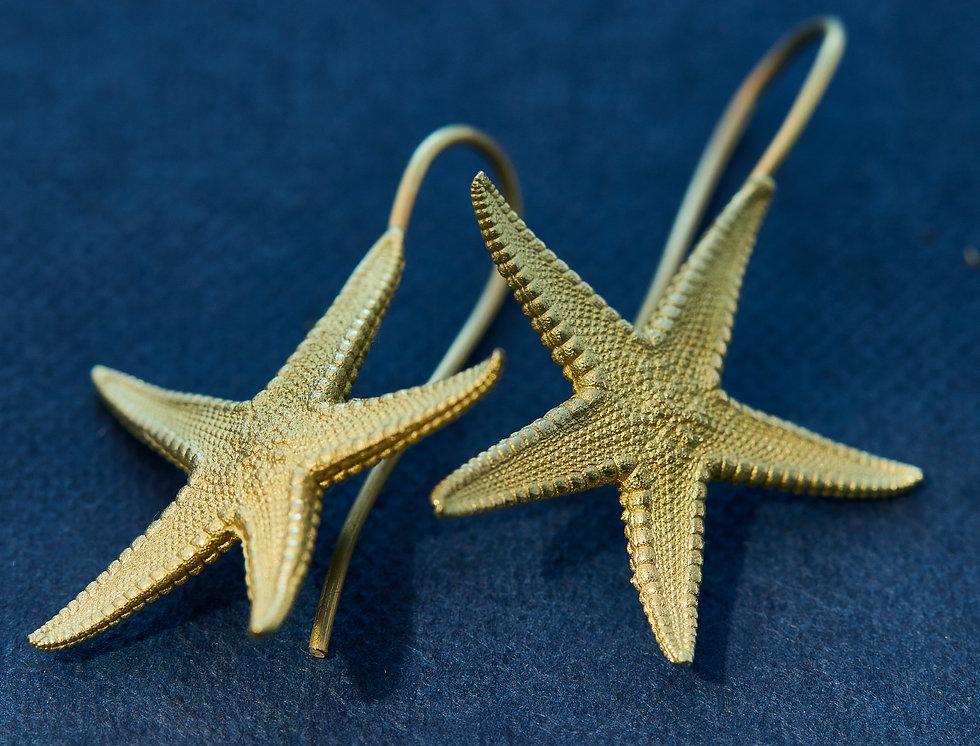 stern 1.jpg