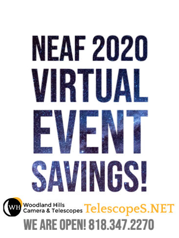 NEAF 2020 ALL - Sandy Cannata.jpg