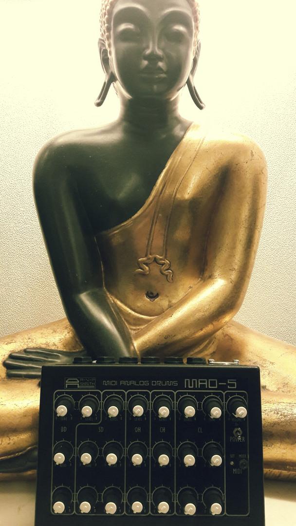 avp synth mad5 buddha.jpg