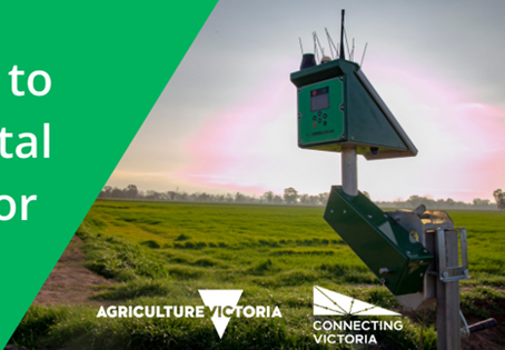 Do you want to invest in digital technology for your farm?