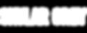 skylar-grey-logo.png