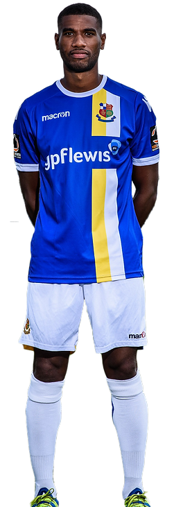 WFC Home Kit.png