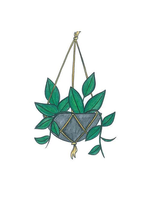 Hanging Botanical Print