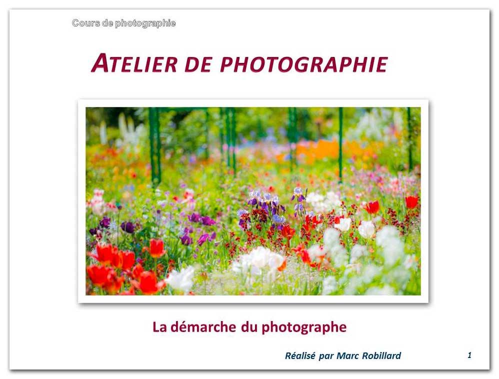 La-démarche-du-photographe-(19-Avril)