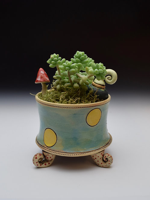 Polka Dot  Whimsy Garden
