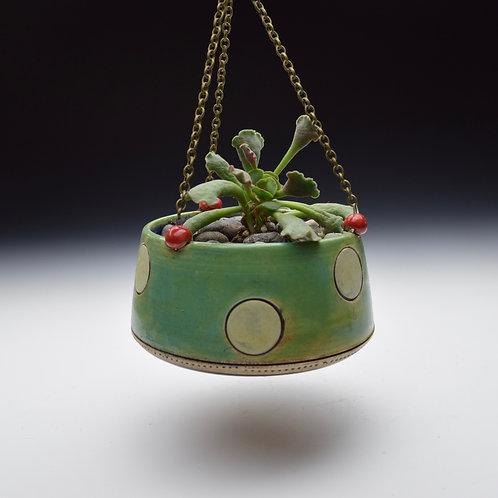 Mint Dot Hanging Succulent Planter