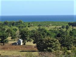 Ocean View Sulu Sea
