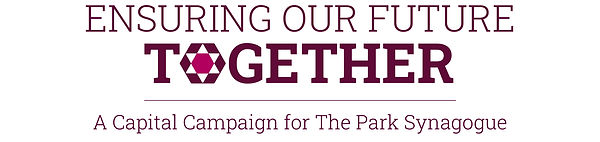 Campaign logo color with tagline.jpg