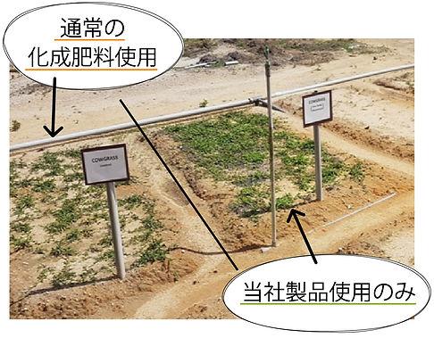 top_image12.jpg