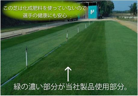 top_image15.jpg
