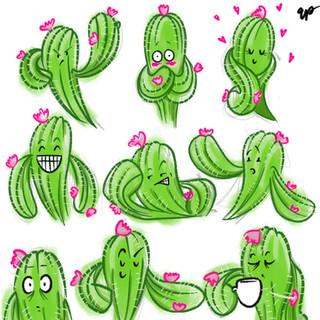 Cuddly cactus