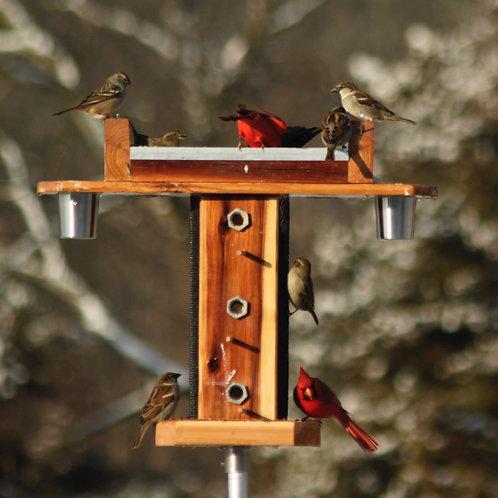 Tree Bird Feeder