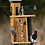 Thumbnail: Woodpecker Trunk