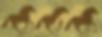 Springs_Ranch_Logo