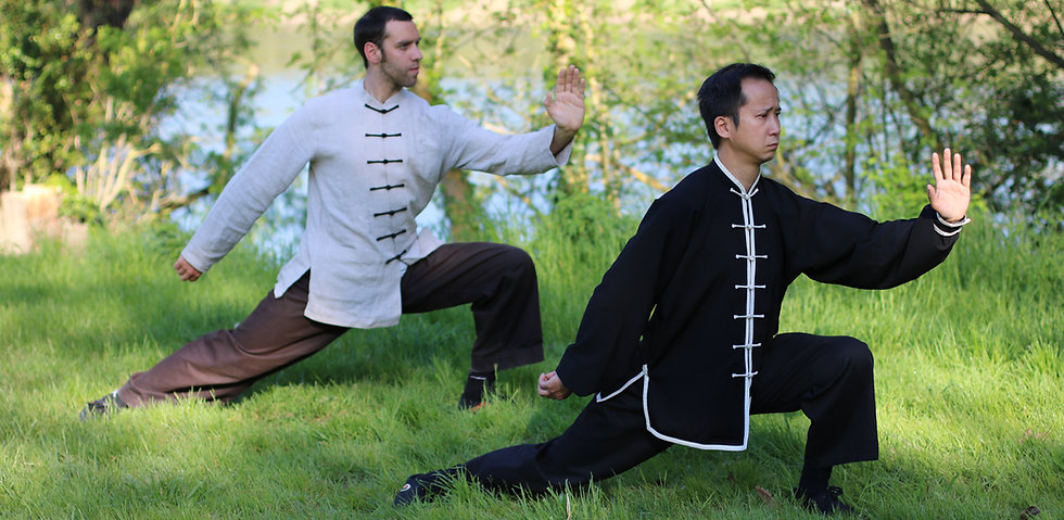Cours Tai Chi Chuan Toulouse