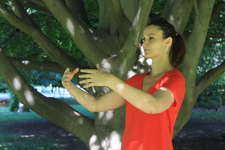 cours qi gong toulouse.JPG