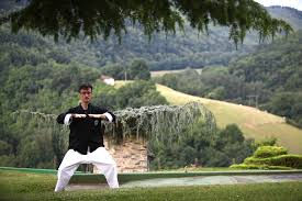 cours qi gong toulouse (2).jpg