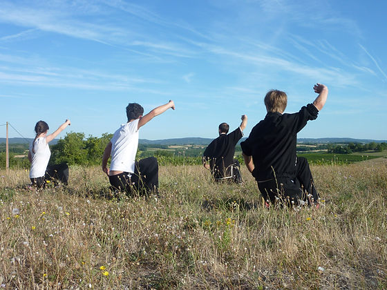 Qi Gong Toulouse Kwoontao