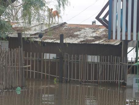 Chuvas no RS deixam 239 famílias desalojadas e 69 desabrigadas