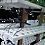 Thumbnail: Custom Hydroponic System