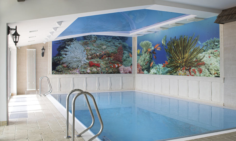Рифы мозаика в бассейн