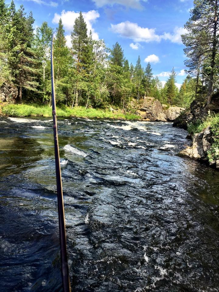 Flyfishing in Kitkajoki
