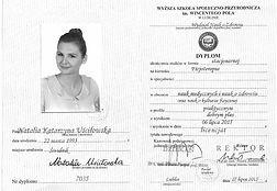 Bachelor Diploma