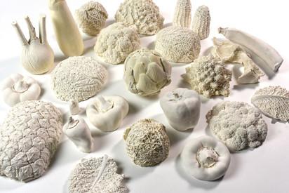 White Veggie Collection