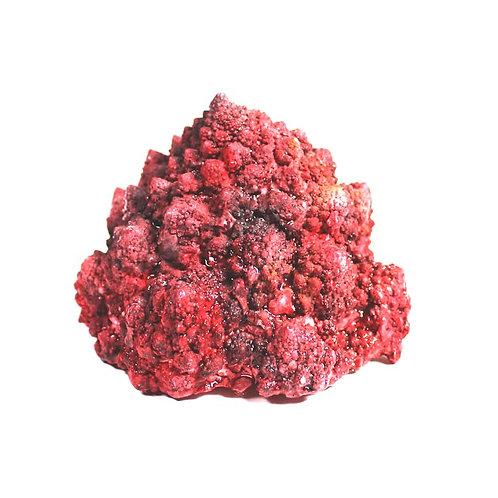 Red broccoli romanesco