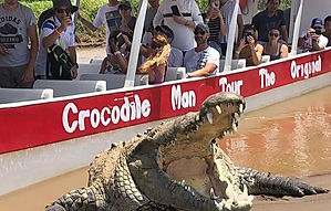 Crocodile Man Tour_edited.jpg