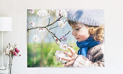 produktkachel-poster-5a8c12ba1cfd0.jpg