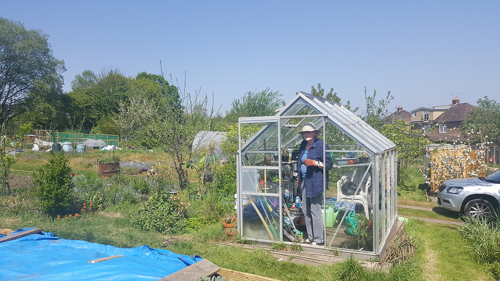 My grandma at the allotment with me