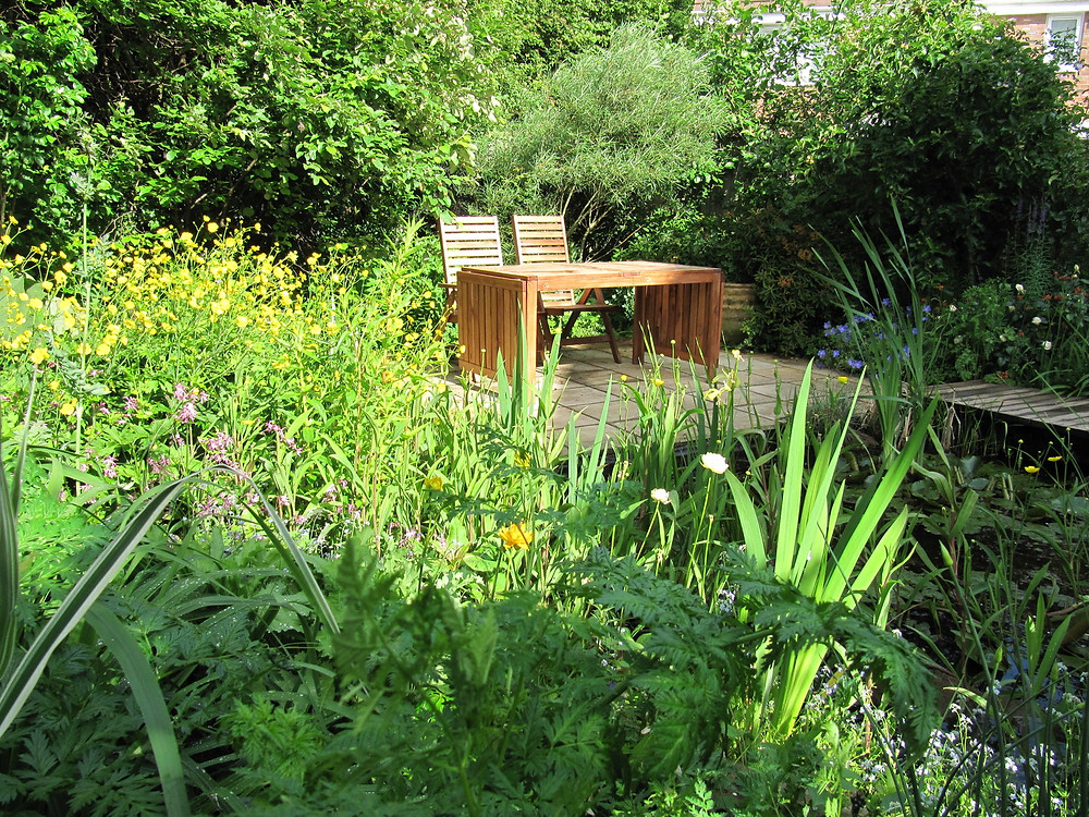 A colourful wildlife garden behind a new estate house, not a boring fence in sight!